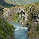 Kawarau Gorge, South Island, New Zealand by Vickie Burt