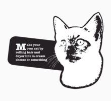 Make your own cat by rolling hair and dryer lint in cream cheese or something by Catebooks