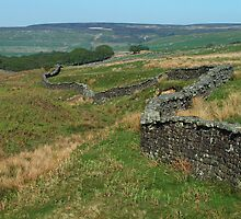 From Pott Moor by WatscapePhoto