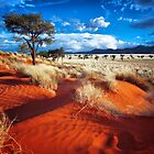 Dancing Grasses on the Red, Red Earth by Jill Fisher