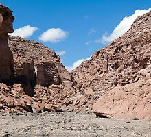 Quezala Canyon, Atacama Desert, Chile by parischris