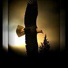 Forever soar by AngieBanta