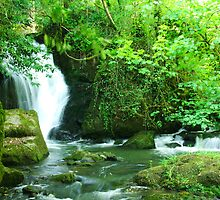Wexford Evenvale Waterfalls  by eventsimages