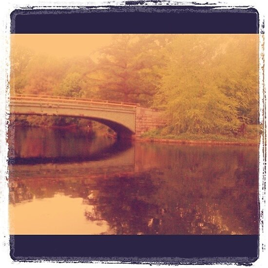 Prospect Park Bridge by andytechie