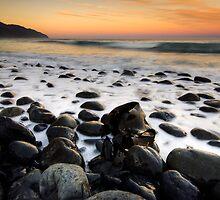 Kaikoura Kelp by Michael Treloar