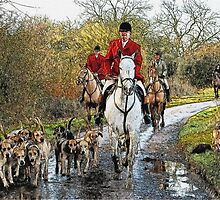 Horse and hounds by MrMild