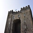The Ireland Series-Bunratty Castle by Brandi  Reynolds