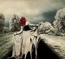 Tumbleweed... by Karen  Helgesen