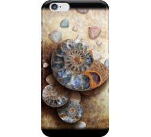 Ammonis Cornua in Color iPhone Case/Skin