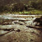 Bull Creek by mikehull221