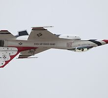 Air Force Thunderbirds Inverted Flying 6 by Judson Joyce
