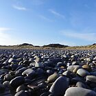 Pebble Beach in Horton by Henry Bird
