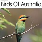 Birds of Australia Calendar Number 2 by Kerryn Ryan, Mosaic Avenues