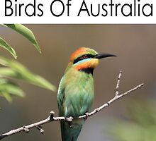 Birds of Australia Calendar Number 2 by mosaicavenues