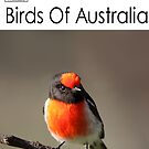Birds Of Australia Calendar Number 1 by Kerryn Ryan, Mosaic Avenues