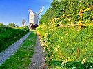 Jill Windmill - HDR by Colin J Williams Photography