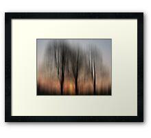 Three Trees in the Morning Light Framed Print