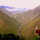 The Andes by dher5