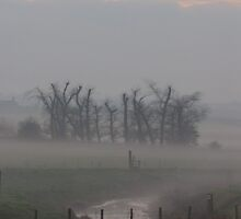 Misty Morning (2), Cheshire by KUJO-Photo