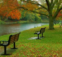 Park Benches, Stratford-upon-Avon by KUJO-Photo