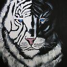 SHADOW TIGER by Dawn B Davies-McIninch