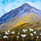 Mountain Daisies by HelenBlair