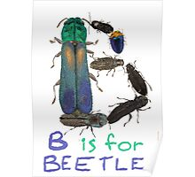 B is for Beetle Poster