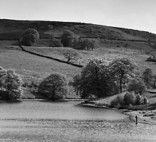 Errwood Reservoir: Take 3 by David J Knight