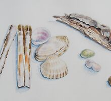 Stones,Shells and Bark by Geraldine M Leahy