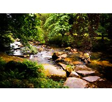 West Dart River at HexWorthy Photographic Print