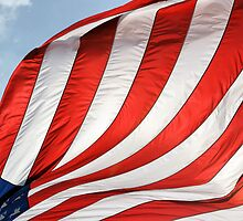 Fabric of Our Freedom by Brian Gaynor