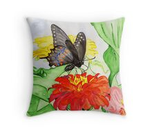 The New Creation….the Black Swallowtail Butterfly Throw Pillow