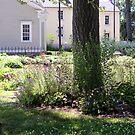A Garden Somewhere by Sandra Lee Woods