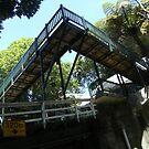 Building in Wellington by cadellin