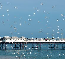 Palace Pier, Brighton, England by KUJO-Photo