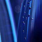 Blue bubbles by PhotoTamara