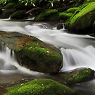 rock in the stream by dc witmer