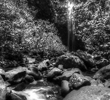 Hanakapi'ai Falls B&W HDR by thatche2