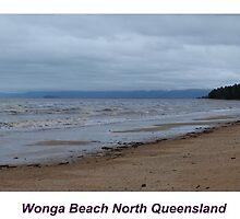 Wonga Beach North Queensland by Virginia  McGowan