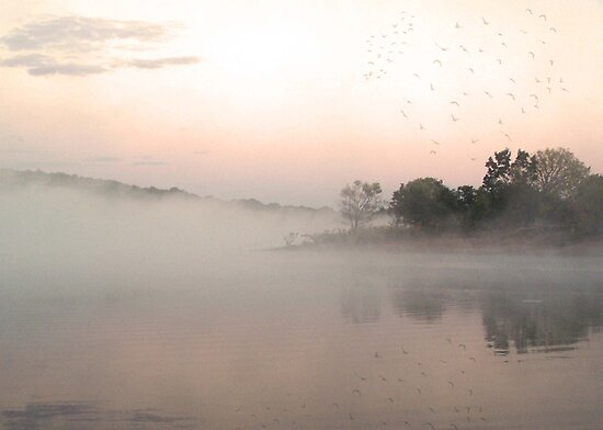 Foggy Sunrise at Walnut Creek by debidabble