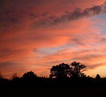 Evening Shadow SunDown Uk by troffle24