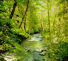 A Spring Day At Lithia Creek by Diane Schuster