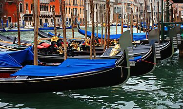 Grand Canal Gondolas Venice Italy by Bob Christopher