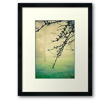 Dew Framed Print