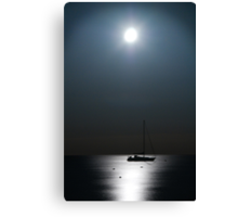 Silver Waters Canvas Print