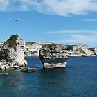 Corsican Cliffs by Trish Meyer