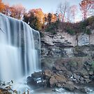 Torrent at Webster's Falls by Rob Smith