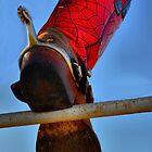 Cowboy Wear by Kristen O'Brian