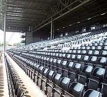 Fulham Football Ground Stand by simone t