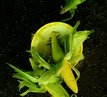 Tossed Corn by peterrobinsonjr